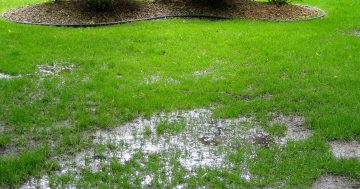 6 Backyard Flooding Solutions for Landscaping a Storm-Proof Yard