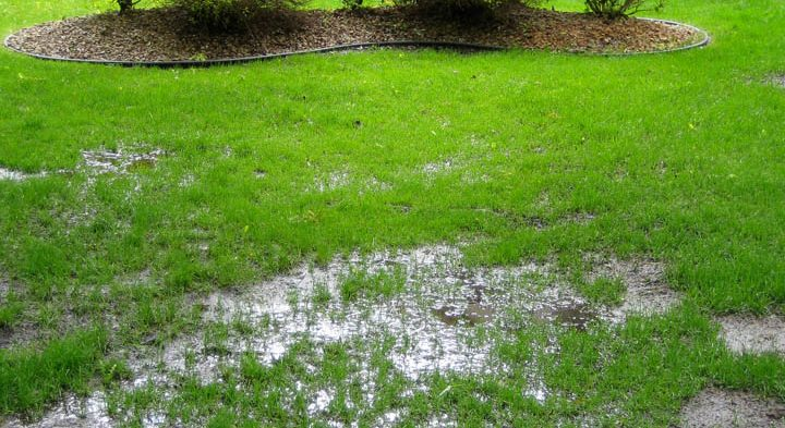 How Landscaping Can Prevent Basement Flooding