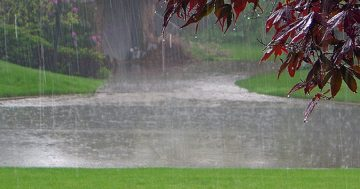 How To Fix A Landscape Drainage Problem On Your Property.