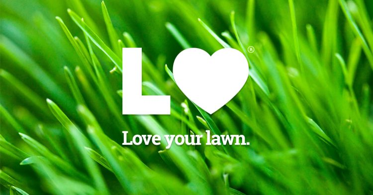 WHY OUR LANDSCAPING SERVICES MAKE THE BEST VALENTINE'S GIFT